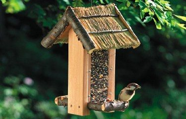 Free Cabin Style Bird Feeder Plan