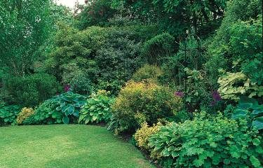 25 shade ideas birds blooms - Shade Garden Design Ideas