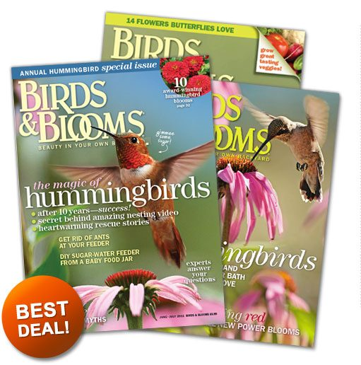Best Deal on Birds and Blooms