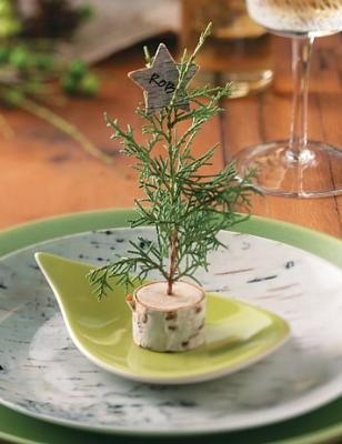 Round out your table setting with complementary birchbark centerpiece