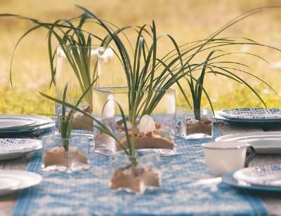 Bring a bit of the beach to your outdoor party table or wedding reception