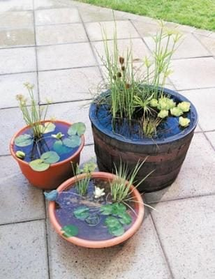 Make Your Own Outdoor Water Garden | TheNicNacStop.com Blog