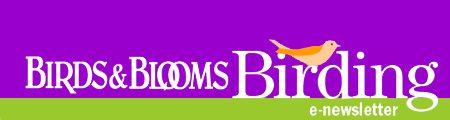 Birds & Blooms Birding