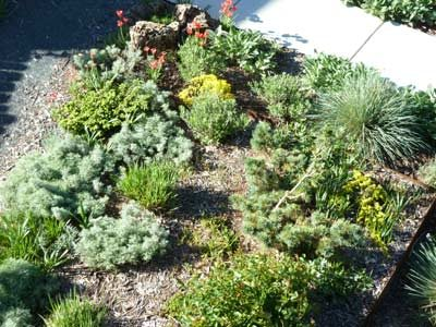 Xeriscaping: Late spring