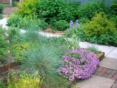 Xeriscaping: Spring detail