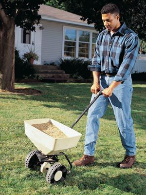 Fertilize grass in the fall