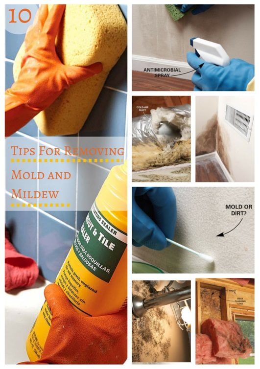 10 Tips For Removing Mold And Mildew