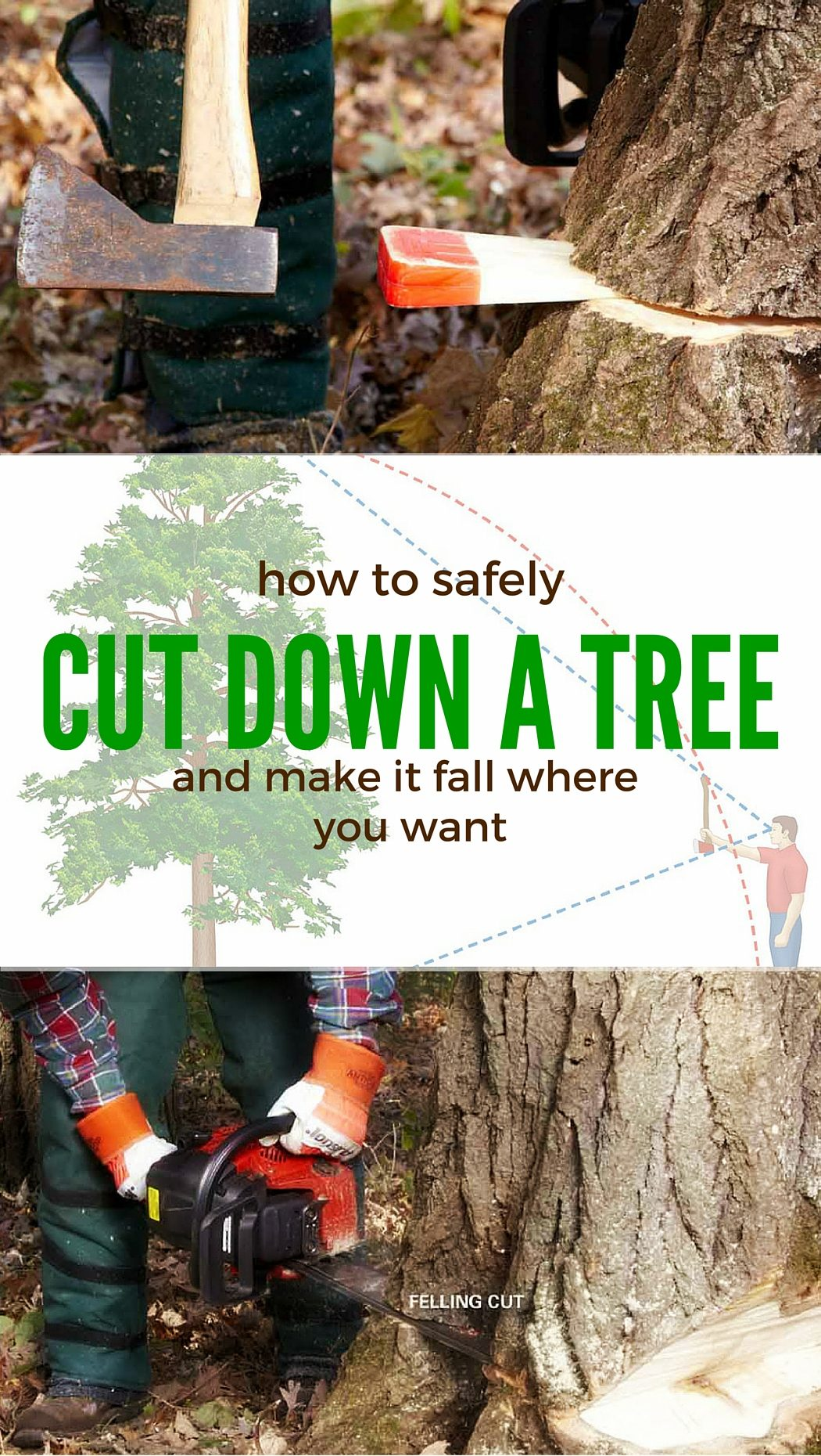 Cut Down A Tree Safely The Family Handyman