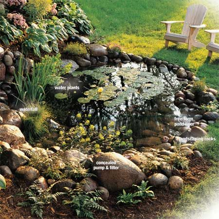 How to build a water garden with waterfall the family for Building a small pond