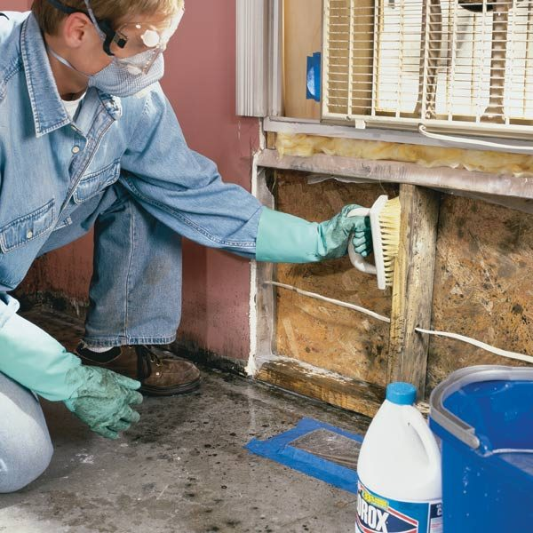 How To Remove Mold The Family Handyman - How to clean up mold in bathroom