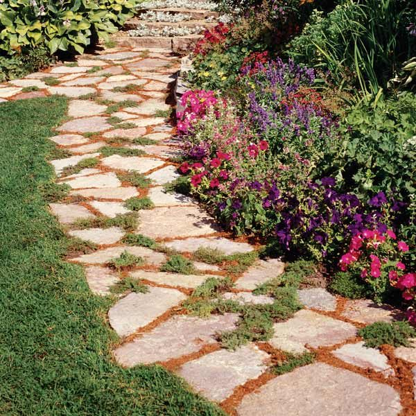 Tough Plants For Paths The Family Handyman