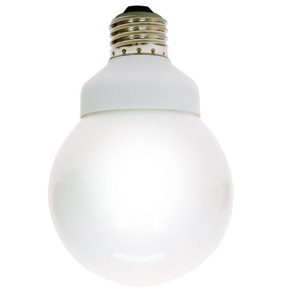 How To Dispose Of Compact Flourescent Lightbulbs Image