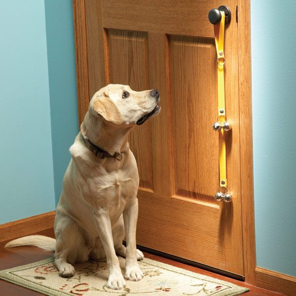 Best Pet Care Tips The Family Handyman