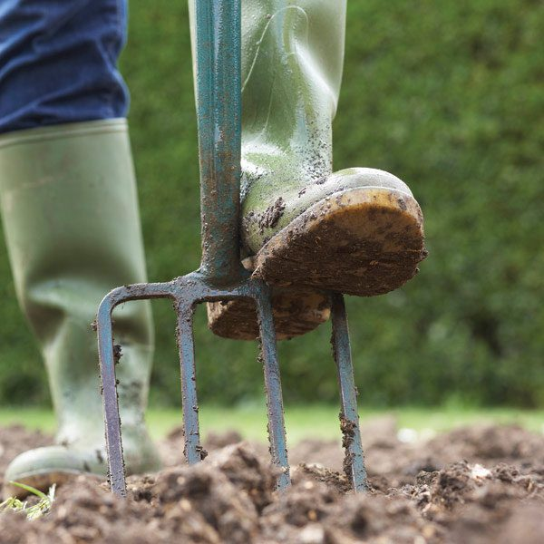 How to Start a Garden The Family Handyman