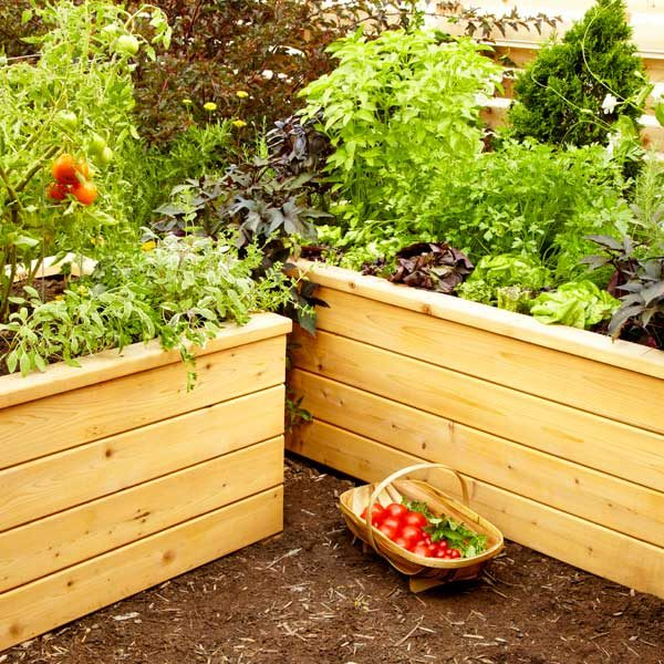 Build Your Own Self Watering Planter The Family Handyman