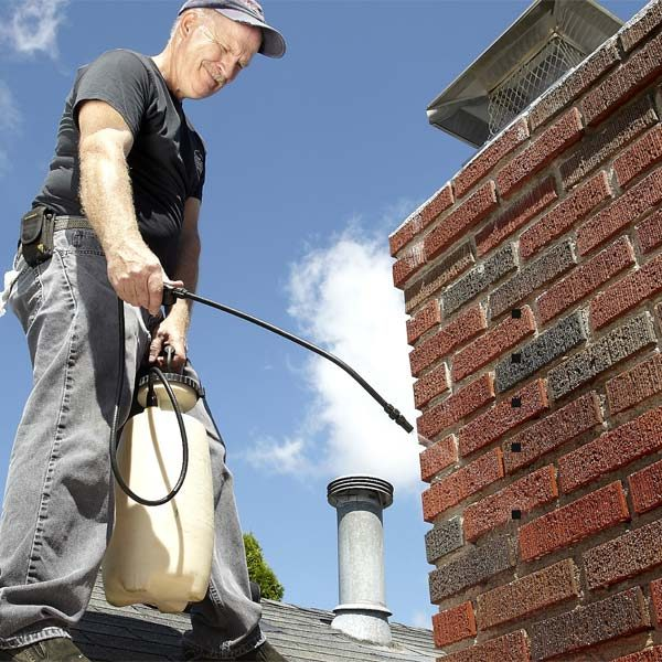 Chimney Maintenance The Family Handyman