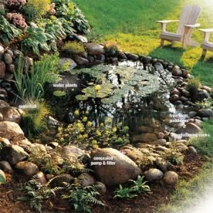 How To Build A Water Garden With Waterfall The Family