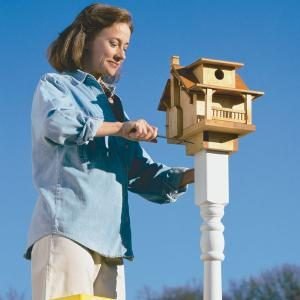 Build a Backyard Birdhouse