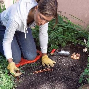 Tips for Easier Gardening