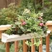 Deck: How to Build a Deck Planter