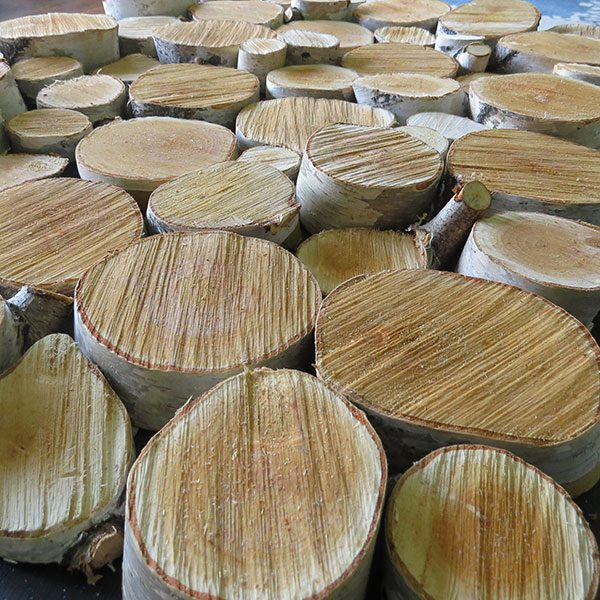 """<b>Cut Log Slices</b></br> <p> This step will vary based on how your log slices are obtained. Whether you choose to cut salvaged logs, or buy craft discs (like <a href=""""https://www.amazon.com/Tinksky-100pcs-Slices-Wedding-Centerpieces/dp/B015IHB0XU/ref=sr_1_3?ie=UTF8&qid=1493757675&sr=8-3&keywords=log+disc"""" target=""""_blank"""">these</a> found online), you will want to end up with 50-100 pieces depending on your width and insert size. For the most realistic look, use a variety of log widths between 1""""-6"""", and vary the depths between 1""""-2"""". Keeping in mind you will want a nice, flat cut for the best glue adhesion, and the larger and thicker the slices are, the harder gravity will work against you. If you are using fresh logs from outdoors, you may need to let these slices dry out after cutting.</p>"""