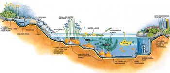 Figure A: Cross section of pond and waterfall