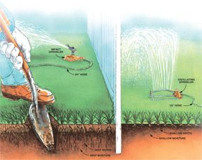 Watering illustration