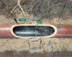 Close-up of sewer line