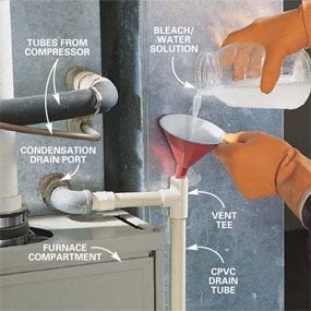 Photo 8: Clean a clogged drain