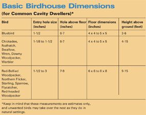 Basic birdhouse dimensions