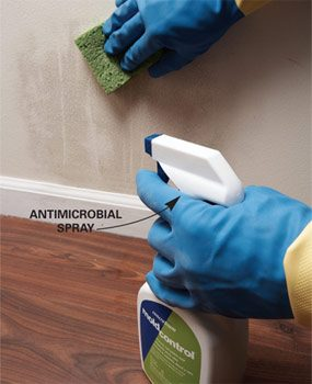 Use an antimicrobial spray
