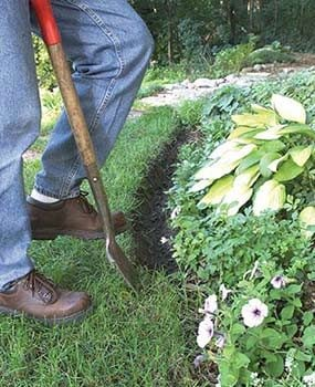 Dig the trench for the landscape edging.