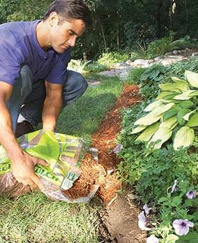 Use organic mulch as landscape edging in the trench.
