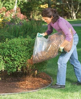 Lawn and Yard Maintenance and Gardening Tips