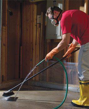 Photo 3: Rinse carefully