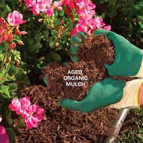 Mulch Guide