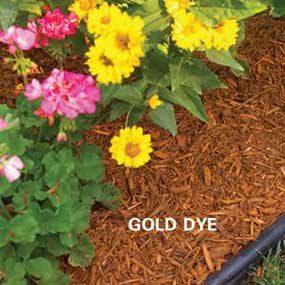 Mulch with gold organic dye