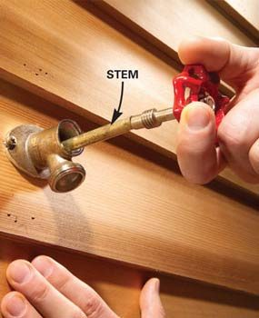 Photo 2: Remove the stem