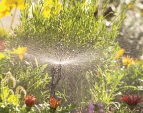 How to Install a Drip Irrigation System in Your Yard