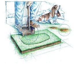 Photo 1: Cut the sod patch