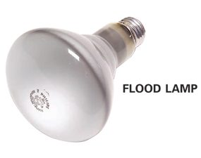 Flood lamp