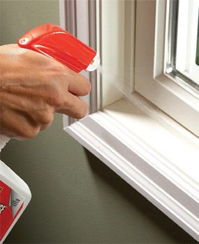 Spray indoor poison along entry points