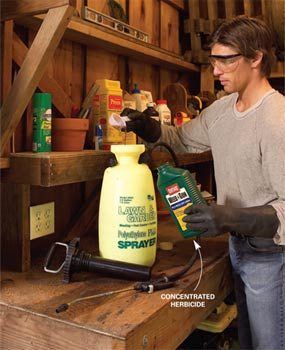 Buy concentrated herbicide