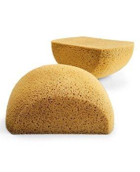 Photo 2A: Close-up of sponges