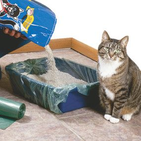 Line the litter box with a plastic bag