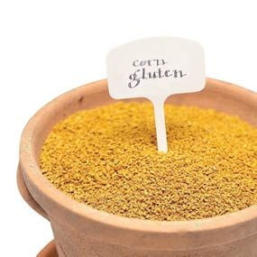 Corn gluten solution