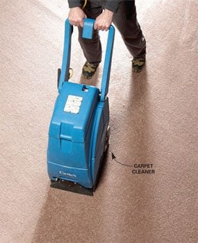 dry out wet carpet with a carpet cleaner or extractor