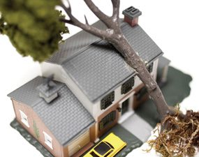 A tree falling on a roof can cause major water damage, so tarp off the hole as soon as you can.