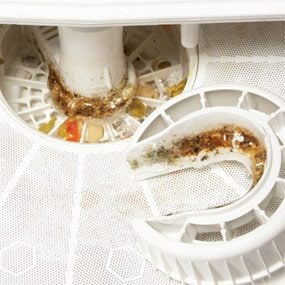 how to clean a smelly dishwasher screen how to deodorize dishwasher, dishwasher smells like fish