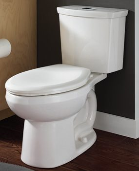 A dual-flush toilet